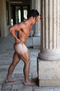 Muscle Fratmen model Trent