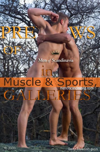 nude swedish guys fighting