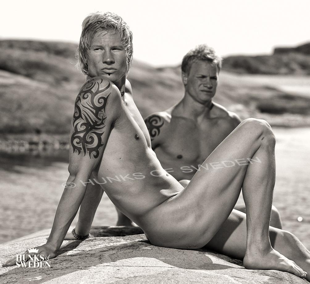 Scandinavian gay erotica