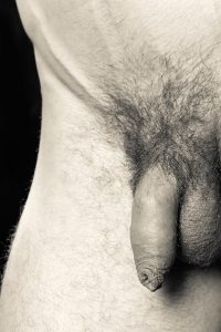 hairy pubes male